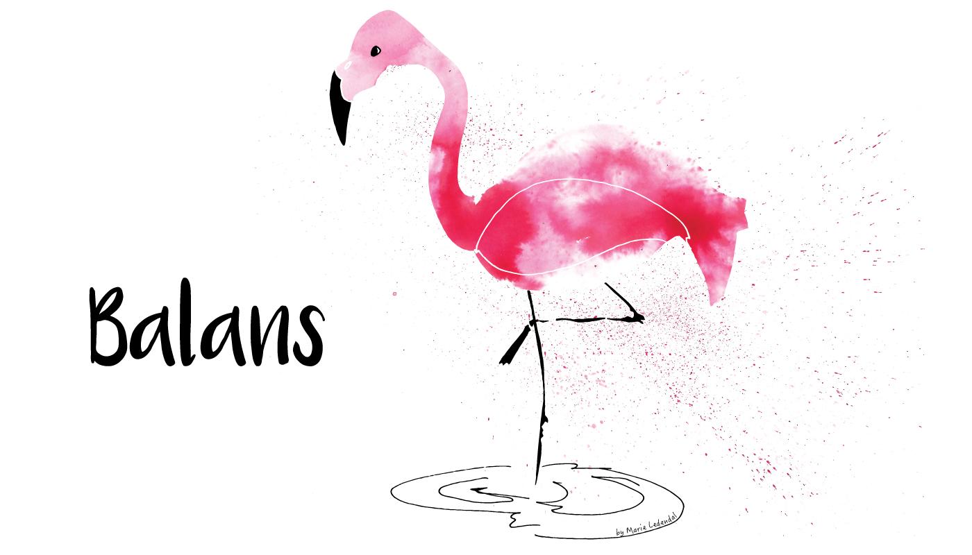 Flamingo_balans